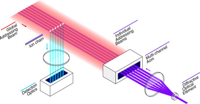 Benchmarking an 11-qubit quantum computer