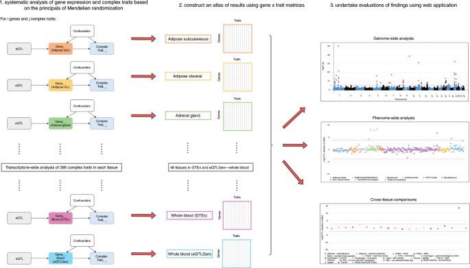 A transcriptome-wide Mendelian randomization study to uncover tissue-d