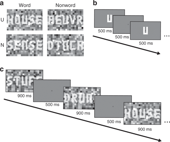 Word contexts enhance the neural representation of individual letters