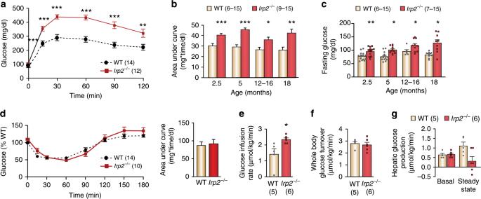 Irp2 regulates insulin production through iron-mediated Cdkal1-catalyz