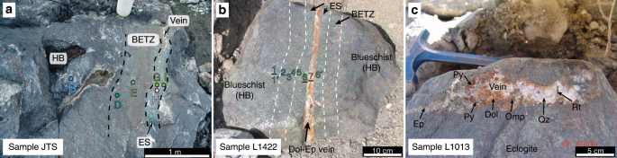 Uncovering and quantifying the subduction zone sulfur cycle from the s