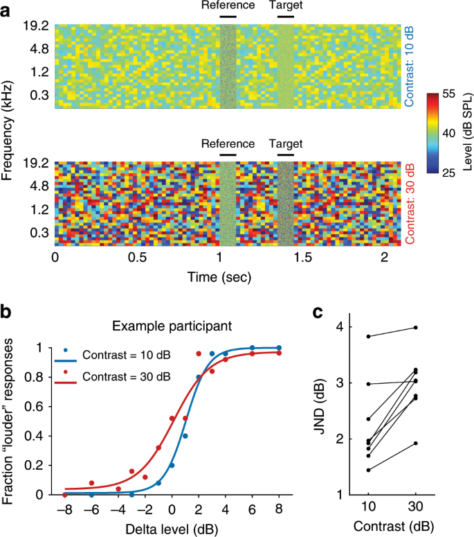 Neural circuits underlying auditory contrast gain control and their pe
