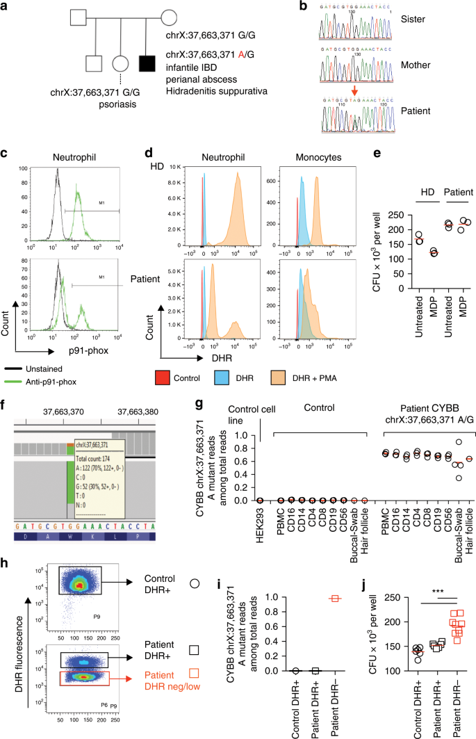 Somatic Mosaicism And Common Genetic Variation Contribute To The Risk Of Very Early Onset Inflammatory Bowel Disease Nature Communications
