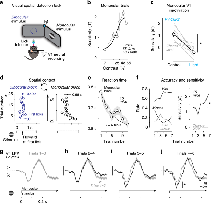 Spatial attention enhances network, cellular and subthreshold response
