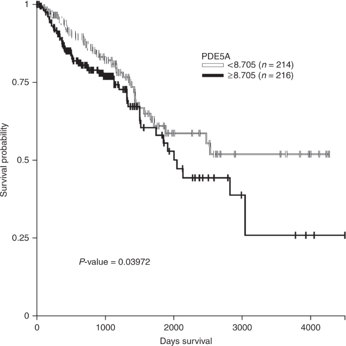 Phosphodiesterase 5 Inhibitors Use And Risk For Mortality And Metastases Among Male Patients With Colorectal Cancer Nature Communications