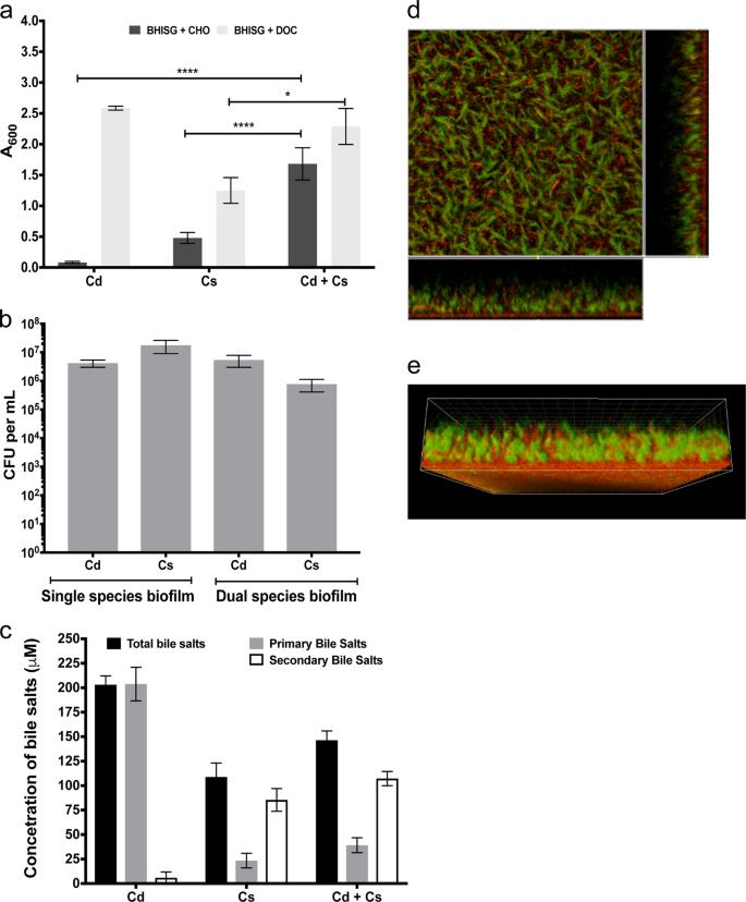 A microbiota-generated bile salt induces biofilm formation