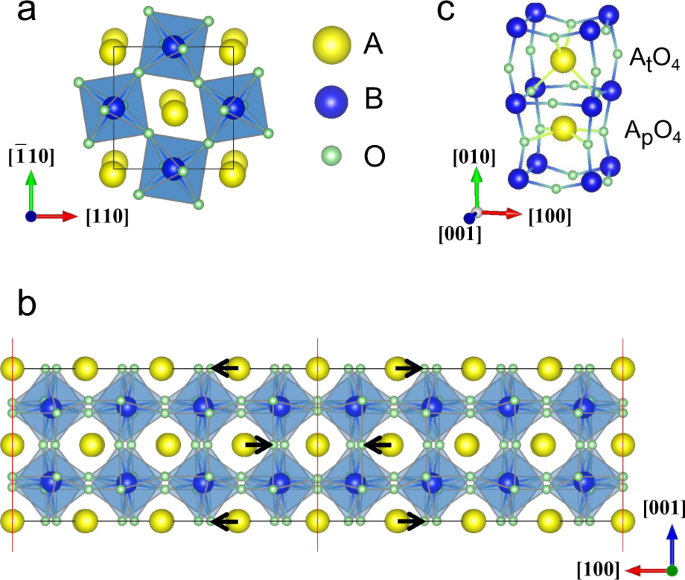 Creating multiferroic and conductive domain walls in common ferroelast