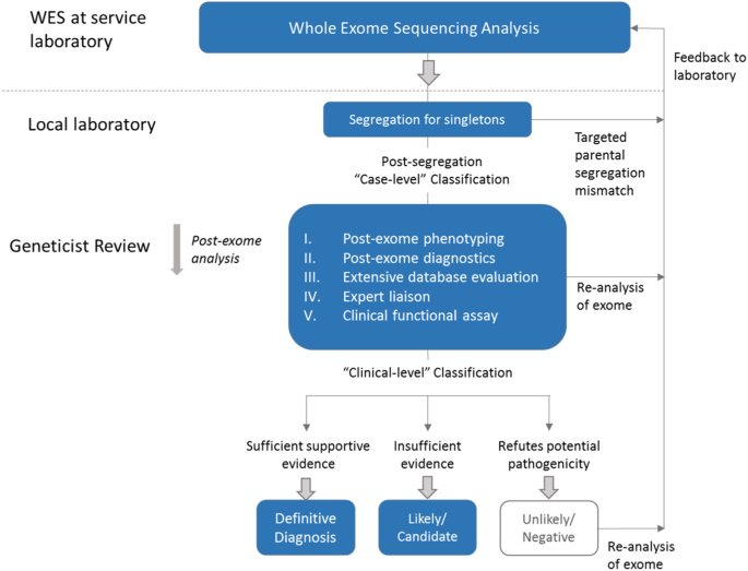 Exome sequencing for paediatric-onset diseases: impact of
