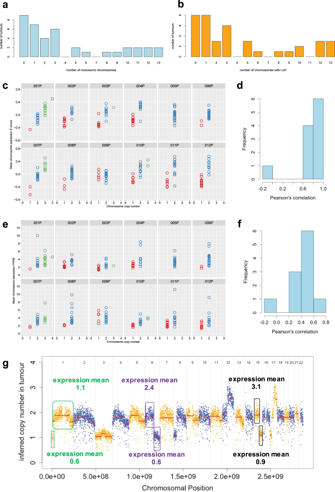 Recurrent Loss Of Heterozygosity Correlates With Clinical Outcome In Pancreatic Neuroendocrine Cancer Npj Genomic Medicine
