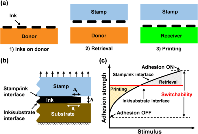 Transfer printing techniques for flexible and stretchable inorganic