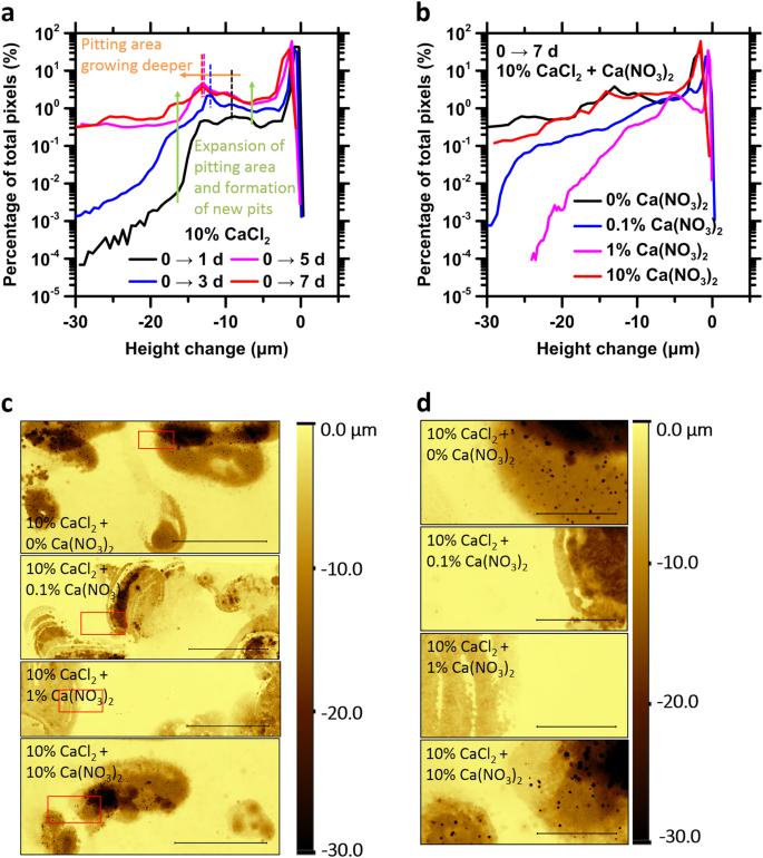 Steel corrosion inhibition by calcium nitrate in halide-enriched