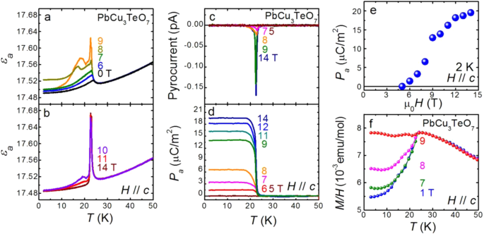 Magnetic field-induced ferroelectricity in S = 1/2 kagome
