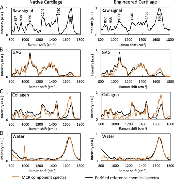 Raman spectroscopic imaging for quantification of depth-dependent