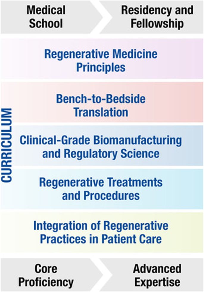Regenerative medicine curriculum for next-generation physicians