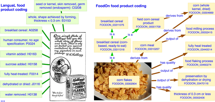 FoodOn: a harmonized food ontology to increase global food