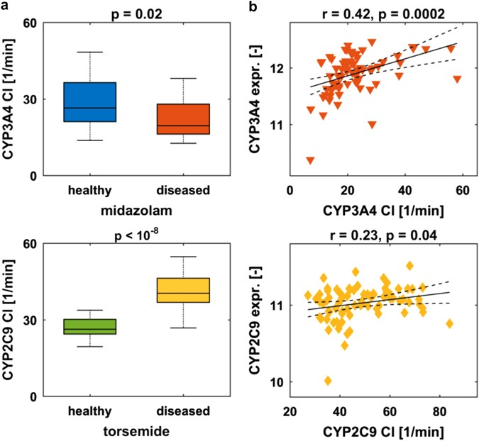 Translational learning from clinical studies predicts drug