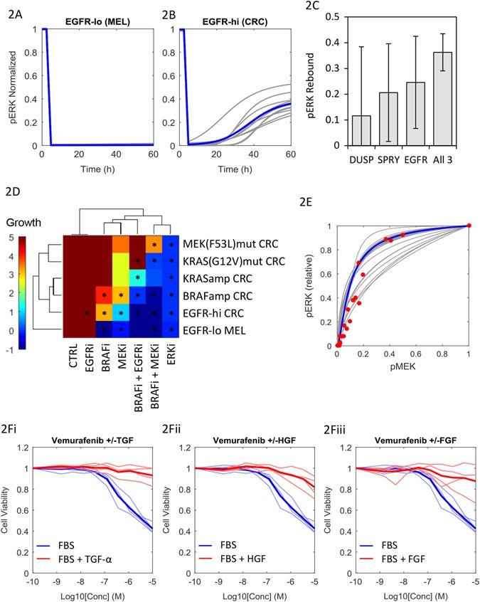 Clinical responses to ERK inhibition in BRAF V600E -mutant