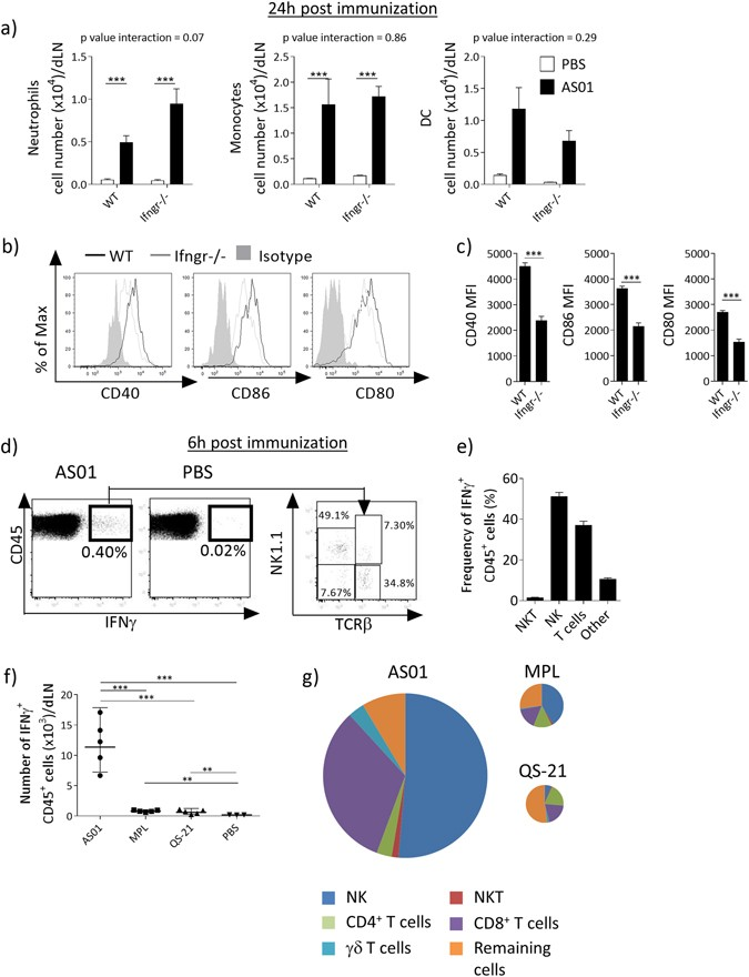 Cellular and molecular synergy in AS01-adjuvanted vaccines