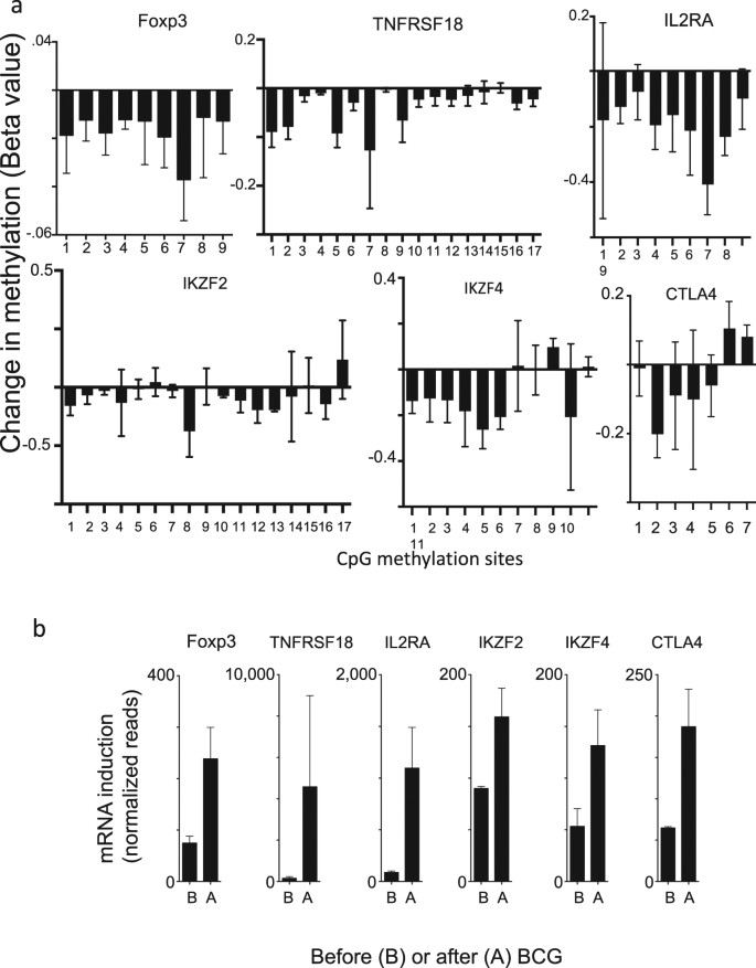Long-term reduction in hyperglycemia in advanced type 1 diabetes