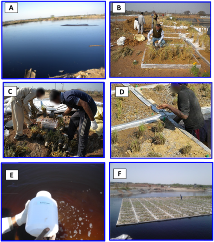 Large-scale remediation of oil-contaminated water using floating