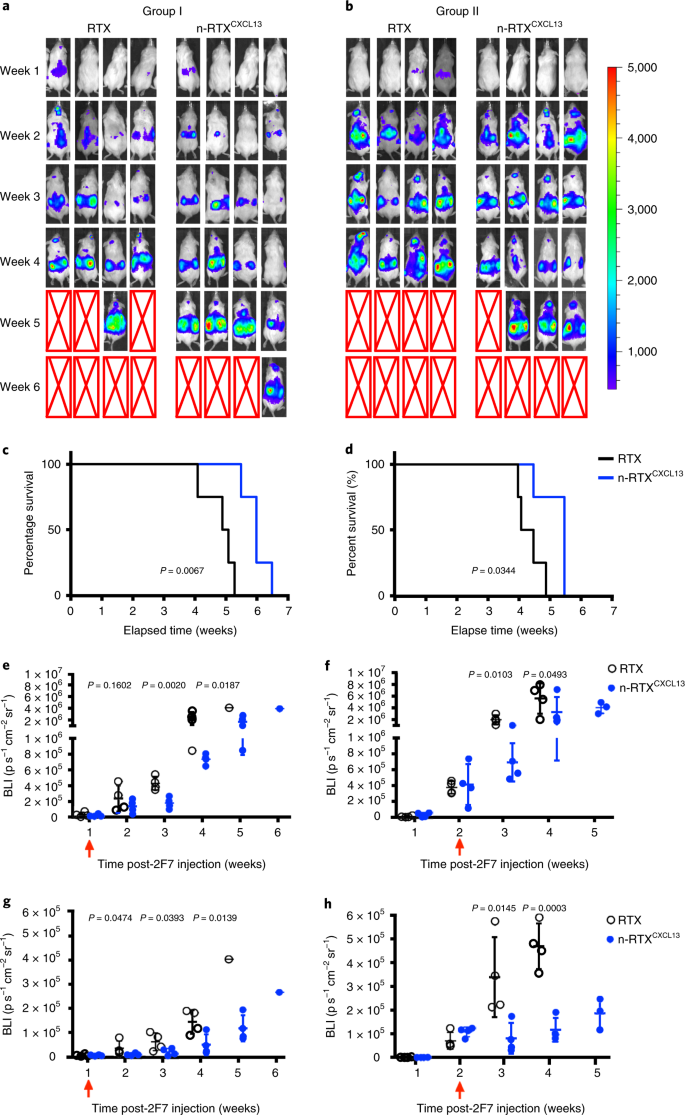 Sustained delivery and molecular targeting of a therapeutic