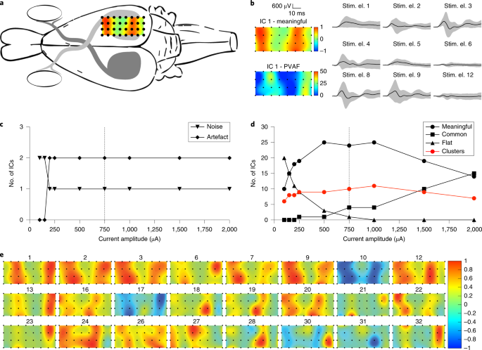 Spatially selective activation of the visual cortex via
