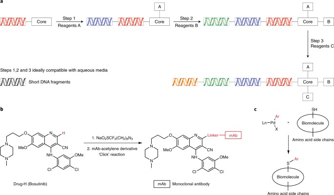 Organic synthesis provides opportunities to transform drug discovery