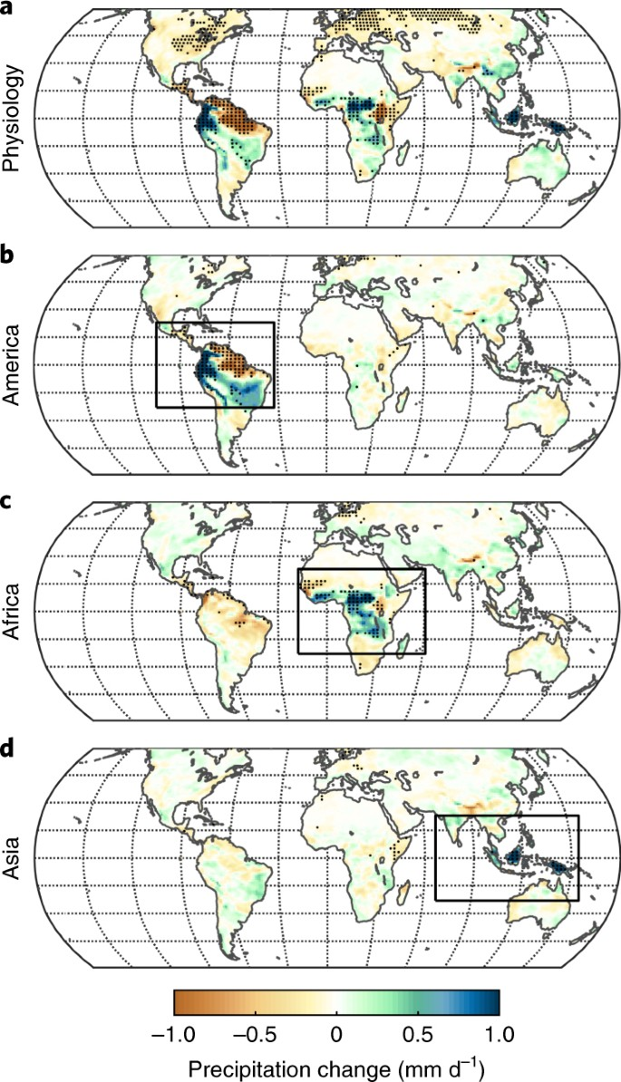 Forest response to rising CO 2 drives zonally asymmetric