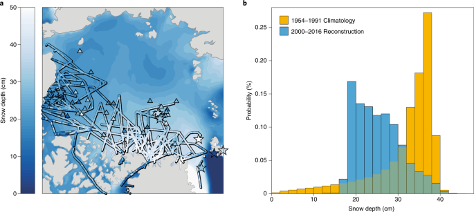 Snow in the changing sea-ice systems | Nature Climate Change