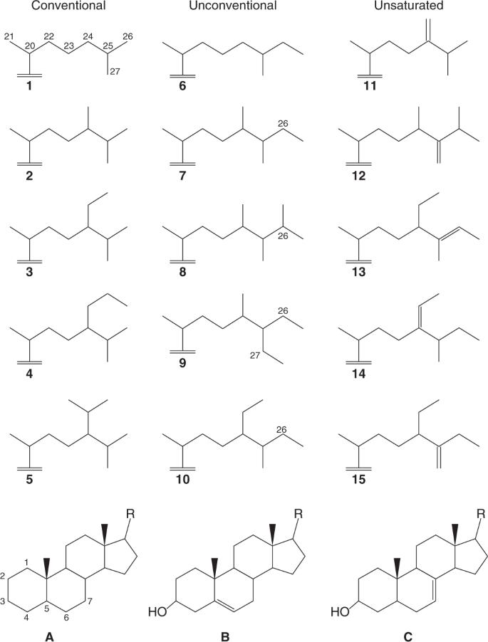 Demosponge steroid biomarker 26-methylstigmastane provides