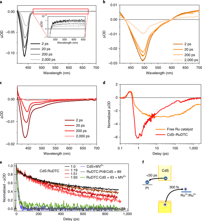 All-in-one visible-light-driven water splitting by combining