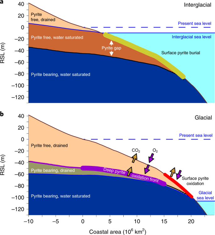 Consistent CO 2 release by pyrite oxidation on continental