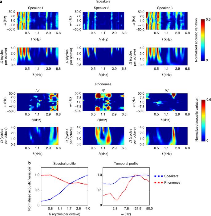 Cortical encoding of speech enhances task-relevant acoustic