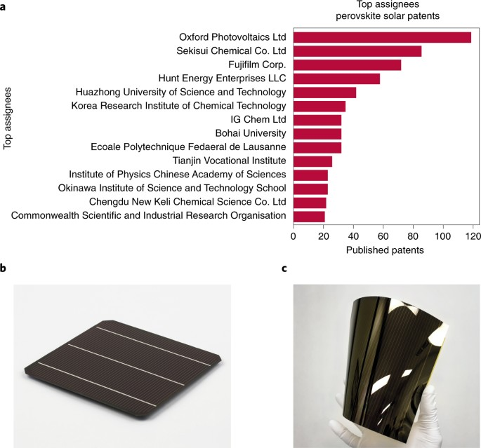 Present status and future prospects of perovskite