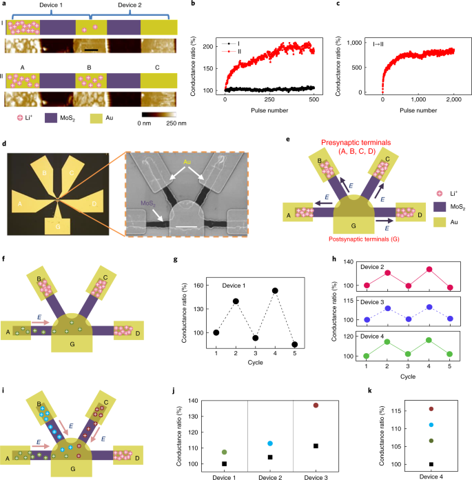 Ionic modulation and ionic coupling effects in MoS 2 devices
