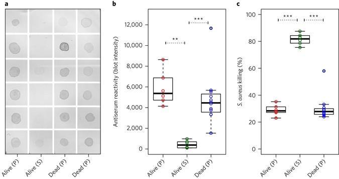 Clonal differences in Staphylococcus aureus bacteraemia