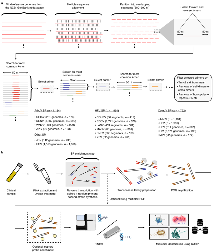 Metagenomic Sequencing With Spiked Primer Enrichment For Viral Diagnostics And Genomic Surveillance Nature Microbiology