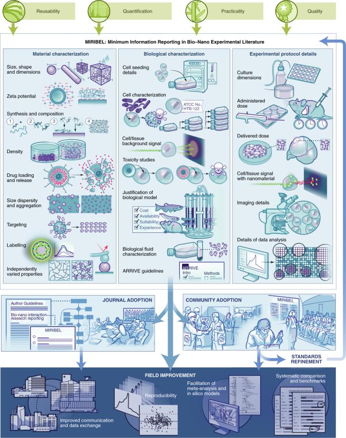 Minimum information reporting in bio–nano experimental literature