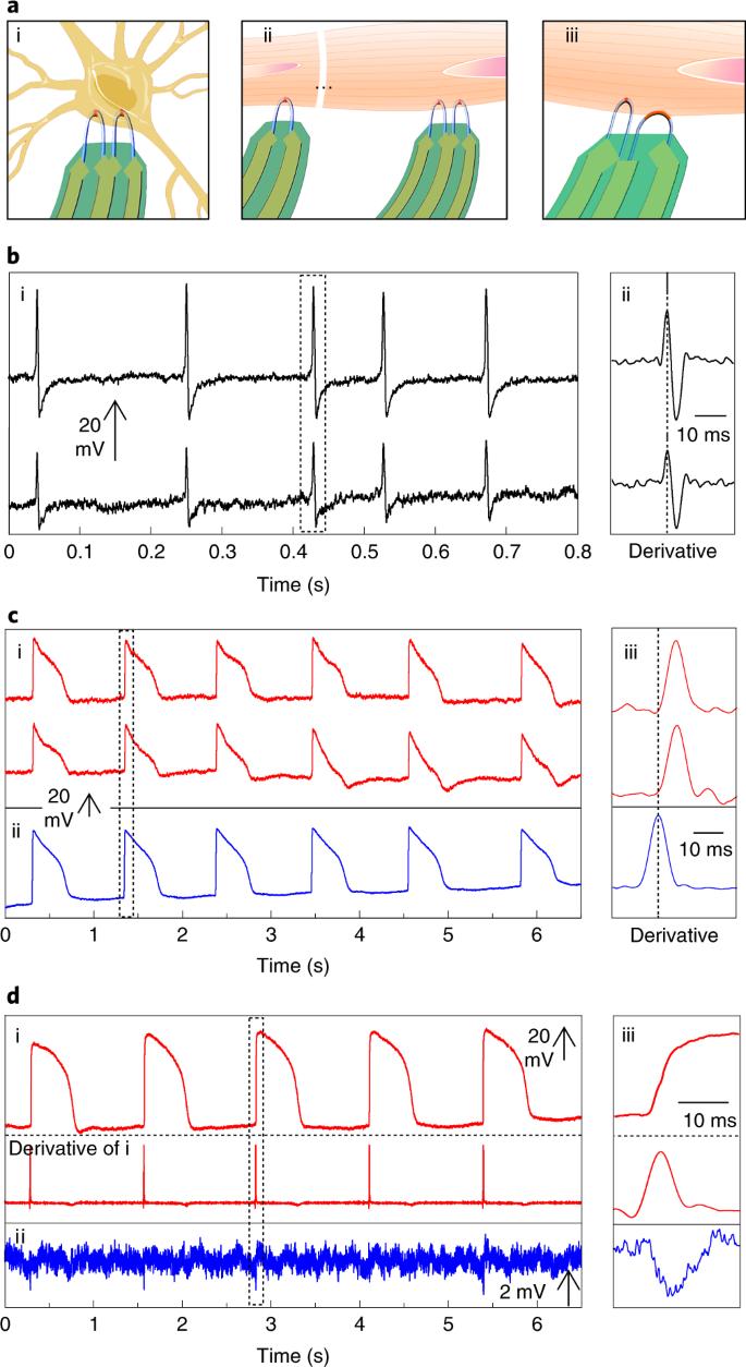 Scalable ultrasmall three-dimensional nanowire transistor