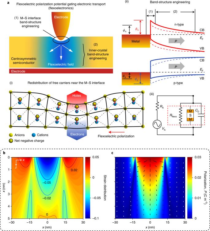 Flexoelectronics of centrosymmetric semiconductors | Nature ...