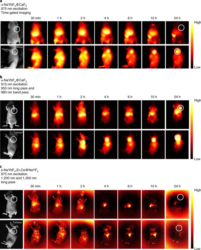 High-sensitivity imaging of time-domain near-infrared light