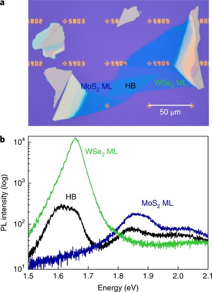 Momentum-space indirect interlayer excitons in transition-metal  dichalcogenide van der Waals heterostructures | Nature Physics