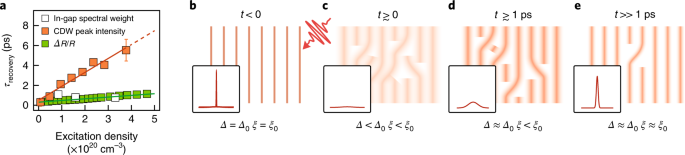 Evidence for topological defects in a photoinduced phase
