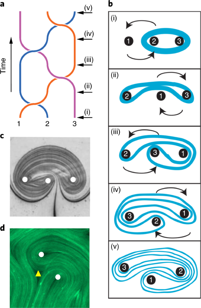 Topological chaos in active nematics | Nature Physics
