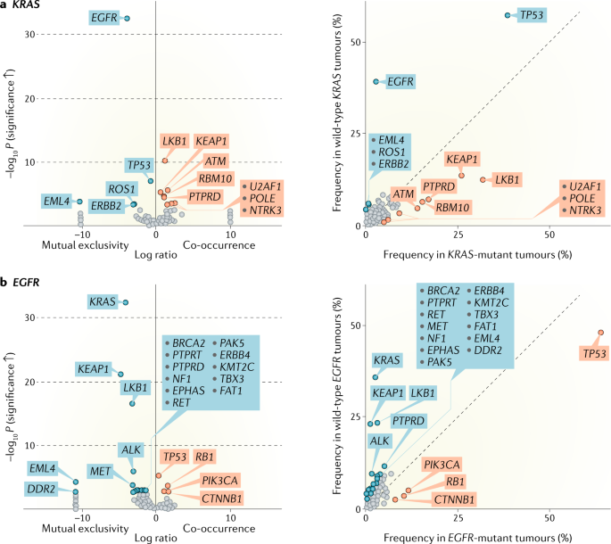 Co-occurring genomic alterations in non-small-cell lung cancer