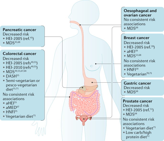 Dietary Patterns And Cancer Risk Nature Reviews Cancer