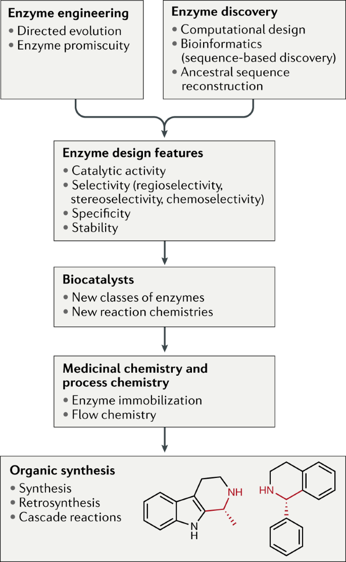 Extending the application of biocatalysis to meet the