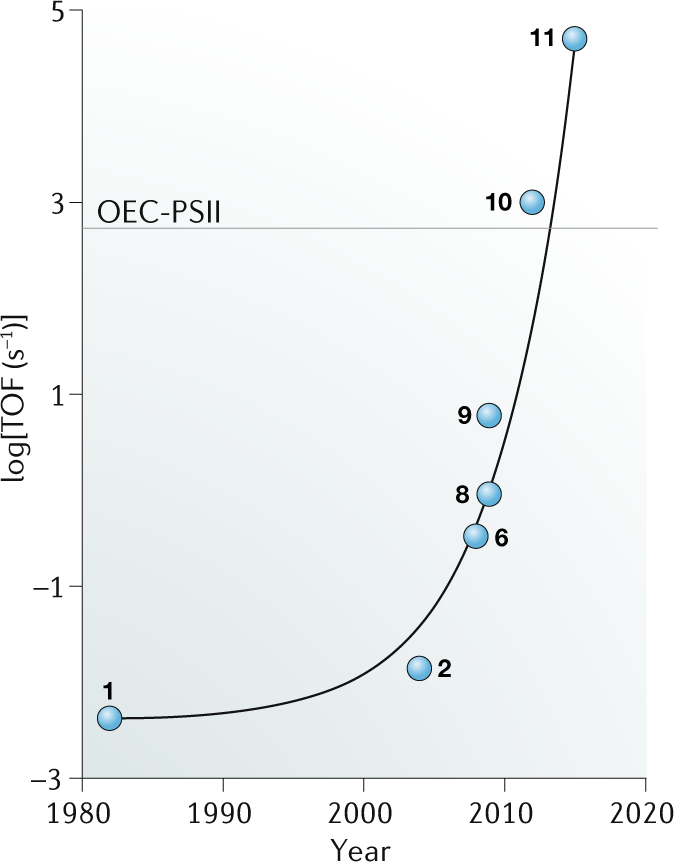The development of molecular water oxidation catalysts