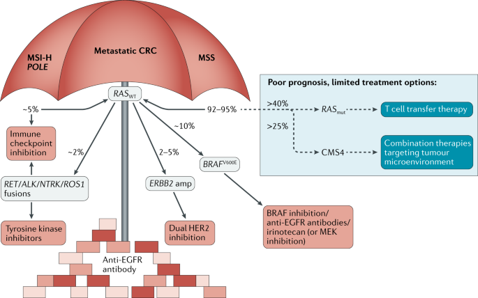 colorectal cancer biomarkers where are we now)