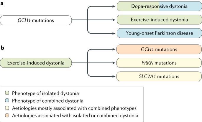 Dystonia   Nature Reviews Disease Primers